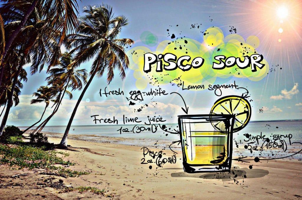 pisco-sour-837047_1280