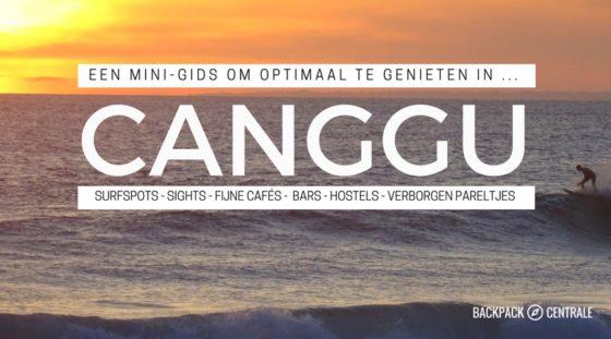 Wat Te Doen In Canggu? Deze Minigids Vertelt Je Wat Je Niet Wilt Missen