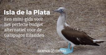 Isla de la Plata: een budgetvriendelijk alternatief voor de Galapagos Eilanden