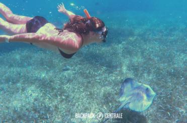 Caye Caulker: Paradijs in Belize